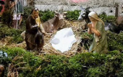 Célébrations de Noël et des prochaines semaines | Communiqué paroissial n°24